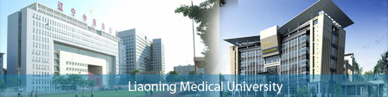 Image result for hubei medical university